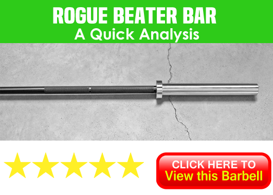 Rogue Beater Bar Review