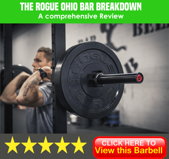 Rogue Ohio bar review