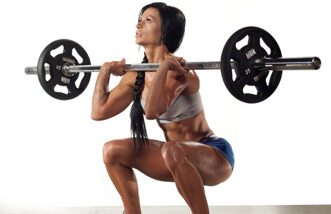 lower body squats