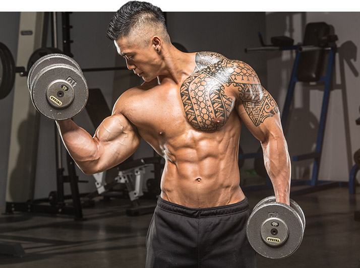 Building Bicep And Tricep Muscle Definition