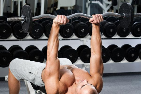 Gym Equipment Names and Pictures | Gym Equipments Price List