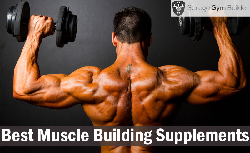 Best muscle building supplements review october