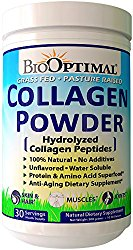 BioOptimal Collagen Powder
