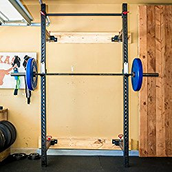 Fringe Sport Wall Mounted Power Rack