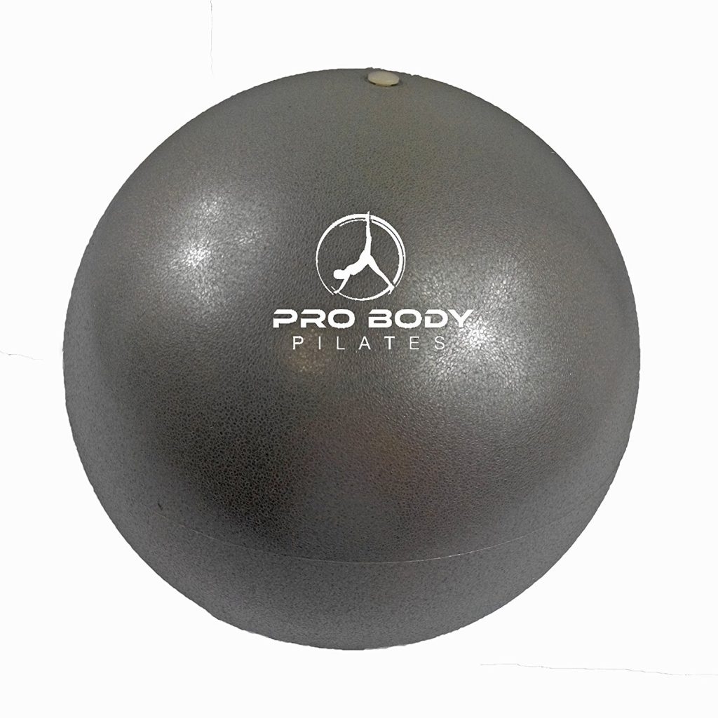 ProBody Pilates Mini Yoga Ball