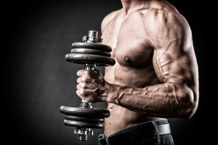 What is Vascularity?