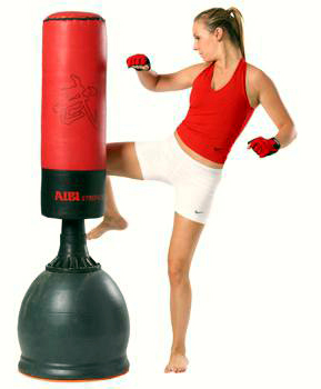What to look for in a Free Standing Punching Bag?
