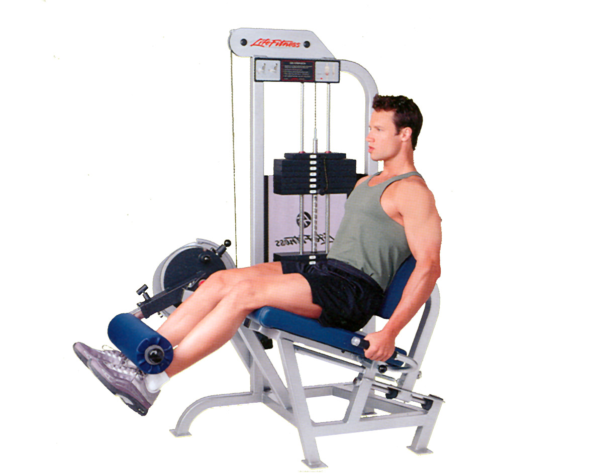 The Top 10 Leg Extension Machines