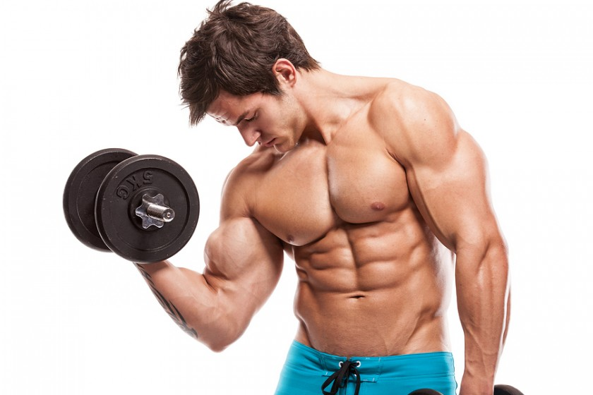 Armor gym knoxville top rated knoxville gym and training facility