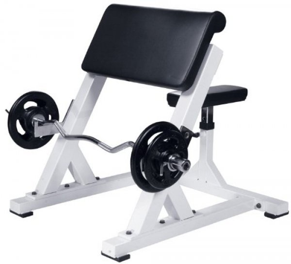 Best Preacher Curl Benches for use at home or in the gym