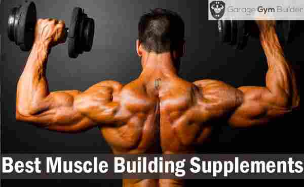 Best Muscle Building Supplements Review 2019