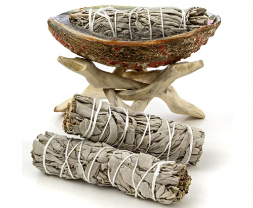 Premium Bundle with 5 Inch or Larger Abalone Shell